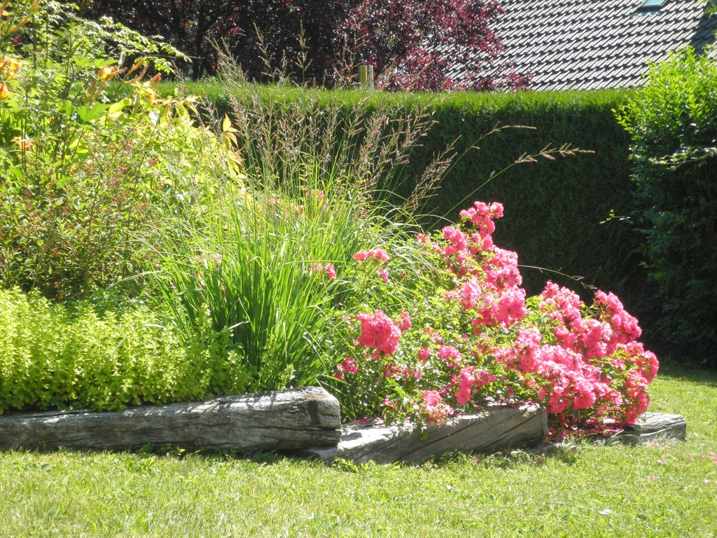 Am nagement de jardin arborescence paysage - Exemple amenagement jardin ...