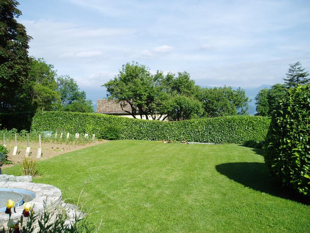 Entretien de jardin arborescence paysage for Entretien jardin yvetot