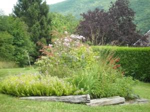 Assortiment végétal avec des floraisons échelonnées