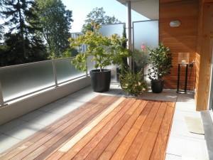 Plancher en Ipé intégré au sol et végétation en fond