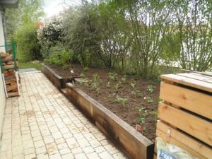 Espace dédié aux petits fruits : fraisiers et framboisiers