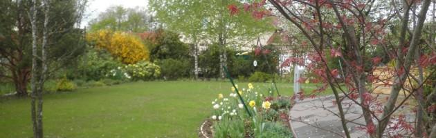 Début de printemps dans ce nouveau jardin