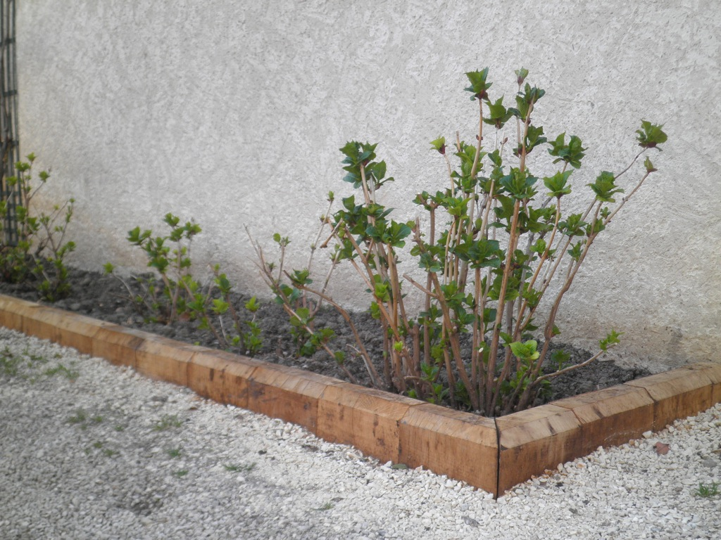Awesome bordure jardin bois exotique contemporary for Borduras jardin