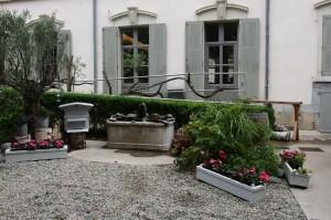 Fontaine et olivier côté cours