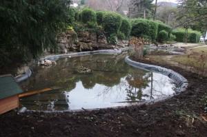 Vu du bassin