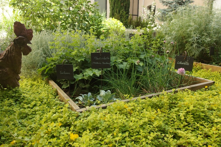 visite de jardin le couvent sainte c cile des edition gl nat arborescence paysage blog. Black Bedroom Furniture Sets. Home Design Ideas